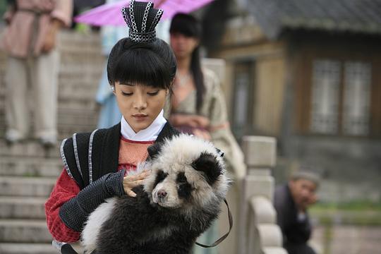 熊猫大侠电影百度云下载剧照